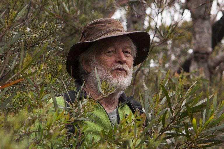 wyn jones in the blue mountains australia - colong wilderness website